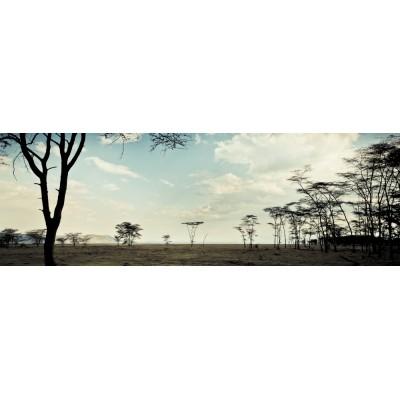 KENYA - Le lac Nakuru - 25