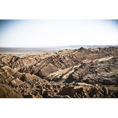 CHILI - Désert d'Atacama - 10