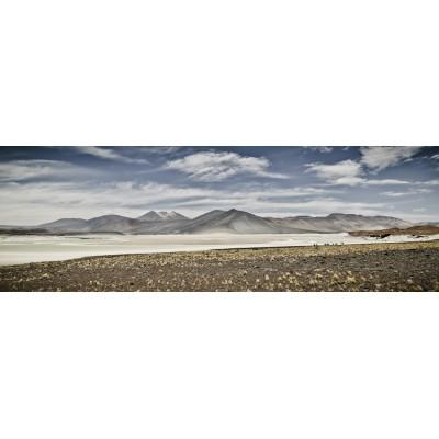 CHILI - Salaar de Talar - 30