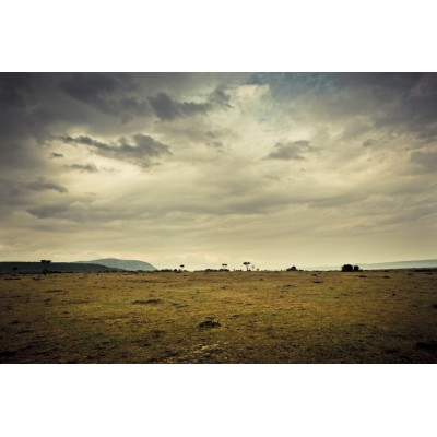 KENYA - Paysage du Masaï...