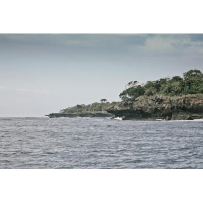 KENYA - Île de Mkwiro - 44